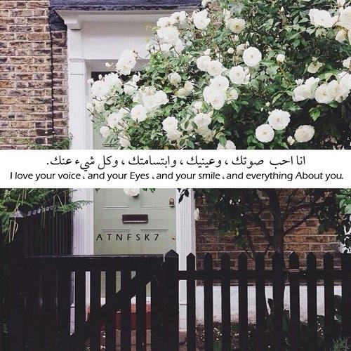 كلام جميل على صور رومانسية 61