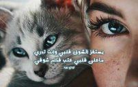 قصائد شوق للحبيب 6