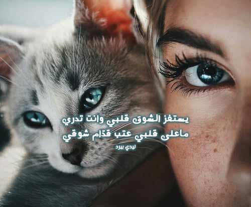 قصائد شوق للحبيب 1