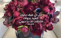 خواطر شوق بمناسبة العيد للحبيب 3