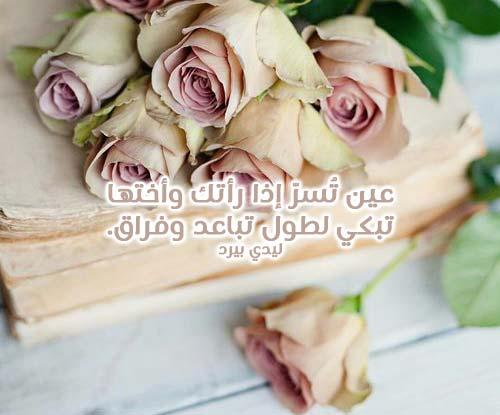 خواطر حب فصحى 3