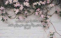 كلام في الحب حزين 4
