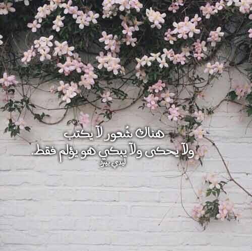 كلام في الحب حزين 1