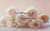 كلمات حب صادقة 3
