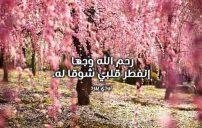 كلمات شوق لمن رحل عن الدنيا