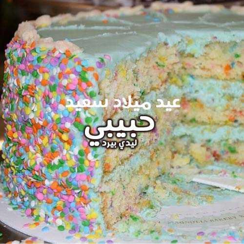 صور عيد ميلاد سعيد حبيبي 3
