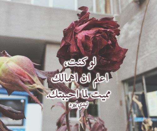 خواطر حزينة عن الحب الحقيقي 1