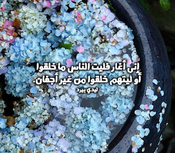 كلام غزل فاحش 1
