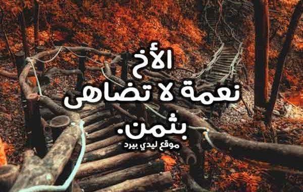 كلام حلو عن الاخ