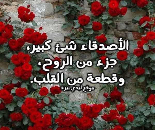 كلام حلو من اجمل كلام حلو عن كل شيء 4