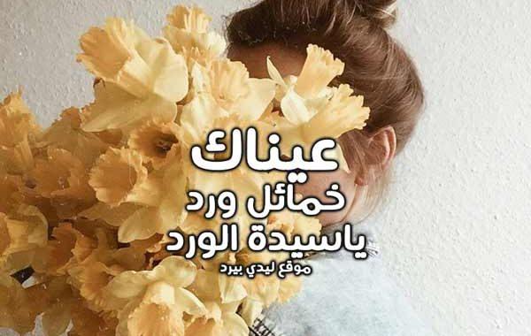 كلام حلو عن الورد 1