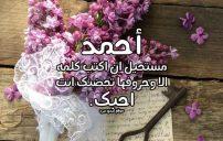 رسائل حب باسم احمد 3