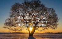كلام جميل لشخص تحبه في الله