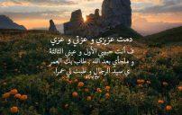 كلمات مدح حبيبي 1