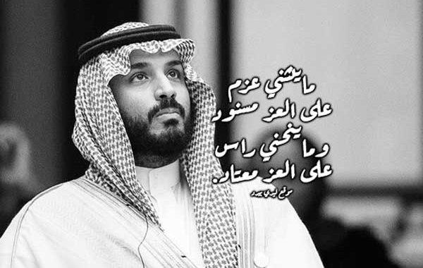 عبارات مدح محمد بن سلمان ليدي بيرد
