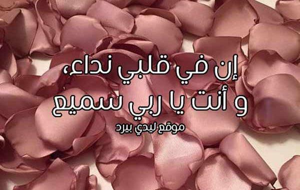كلام انت في قلبي
