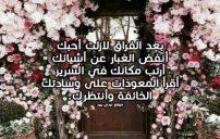 كلام عن العودة بعد فراق
