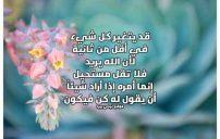 كلمات دينية جميلة