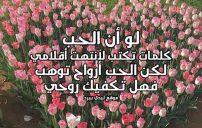 كلمات حب الى حبيبي 2
