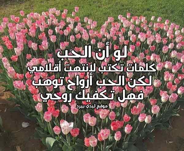 كلمات حب الى حبيبي 3