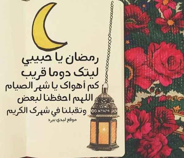 دعاء رمضان للحبيب ليدي بيرد