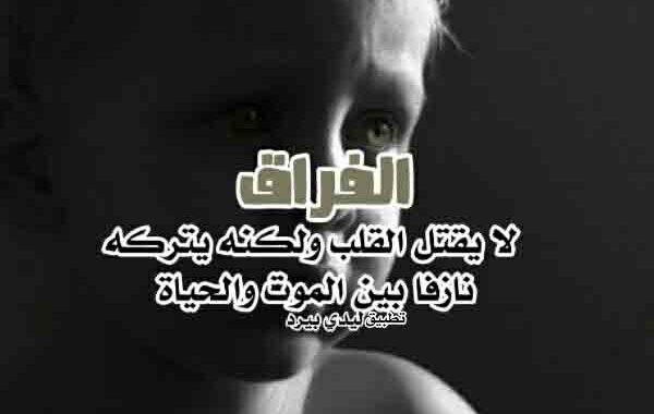 كلمات فراق حزينة ليدي بيرد