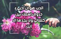 كلام جميل عن الحب والعشق