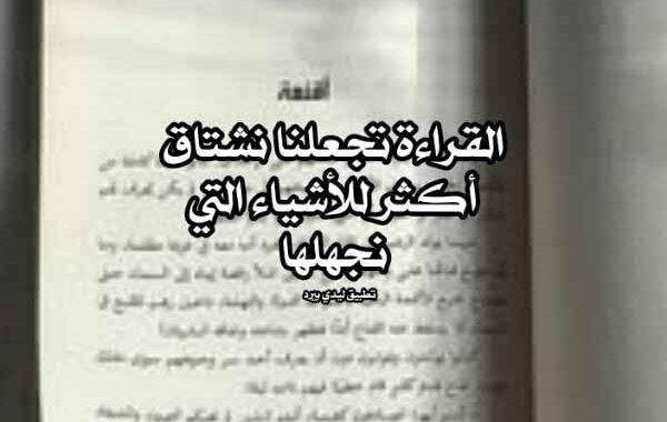 كلام جميل عن القراءة