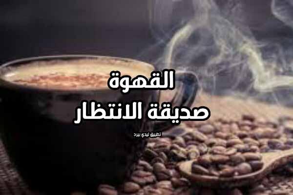 كلام جميل عن القهوة ليدي بيرد