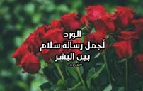كلام جميل عن الورد
