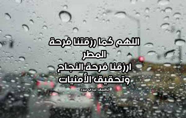 دعاء النجاح في المطر ليدي بيرد