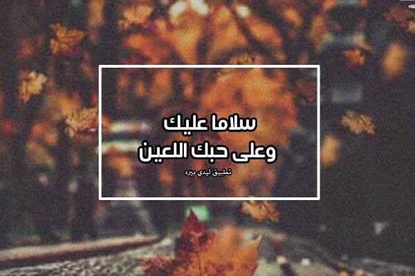 كلام لمن لا يحبك