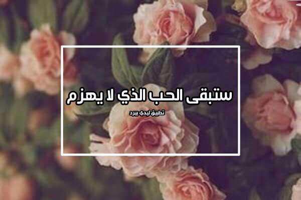 كلام لمن يحبك