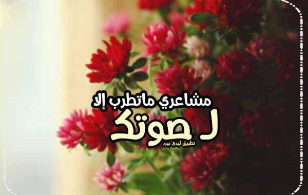 كلام يخلي الشخص يحبك