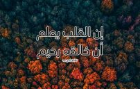 كلمات اسلامية للاصدقاء